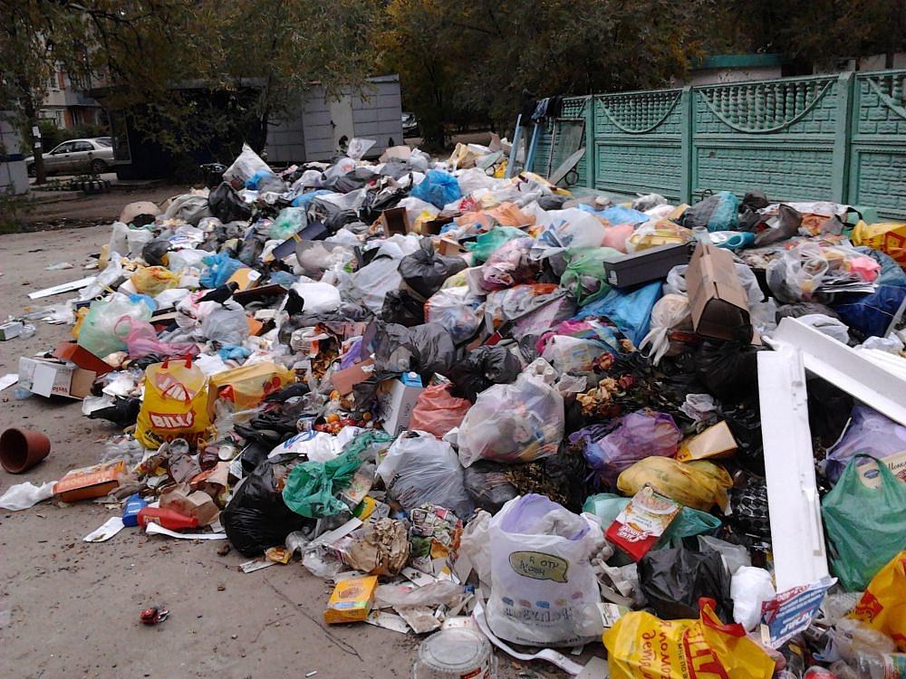 мусор из ливана повезут в россию термобелье